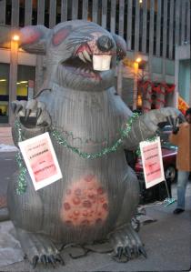 Yucky NY Rat